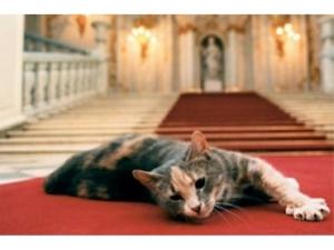 1__upload_iblock_f7d_cats_republic