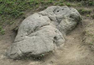 «Камень-гусь» в Коломенском [5]