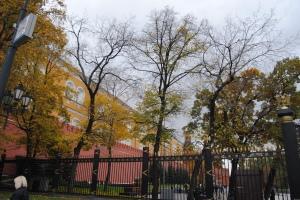 Чугунная решетка ворот Александровского сада