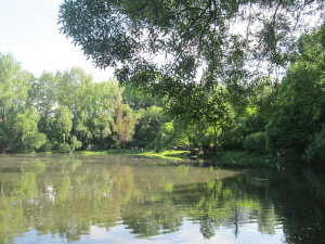 Нарышкинский пруд. Современный вид [31]