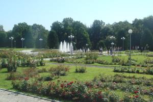 Лето в ботаническом саду[3]